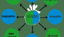 Leader Ansatz