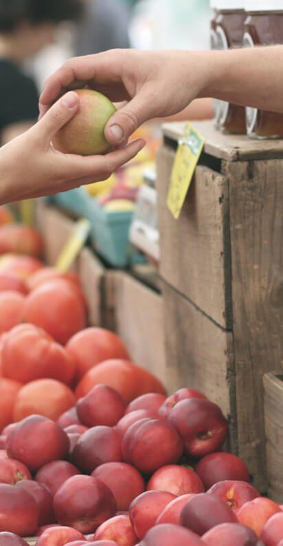 Neues Markthaus für den Bauernmarkt Regau